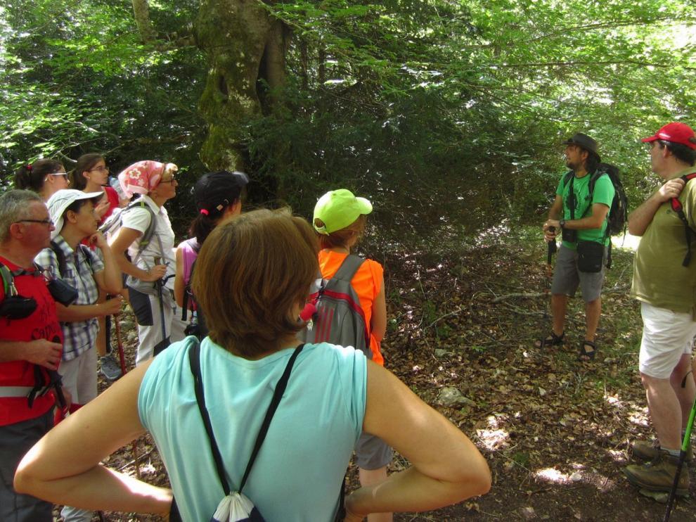 Reactivan las visitas guiadas en La Hoya de Huesca