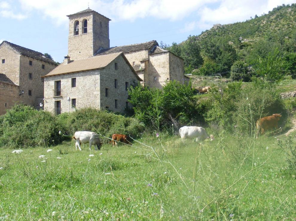 Piden una nueva propuesta para la Ley de Protección y Modernización de la Agricultura Familiar y del Patrimonio Agrario de Aragón