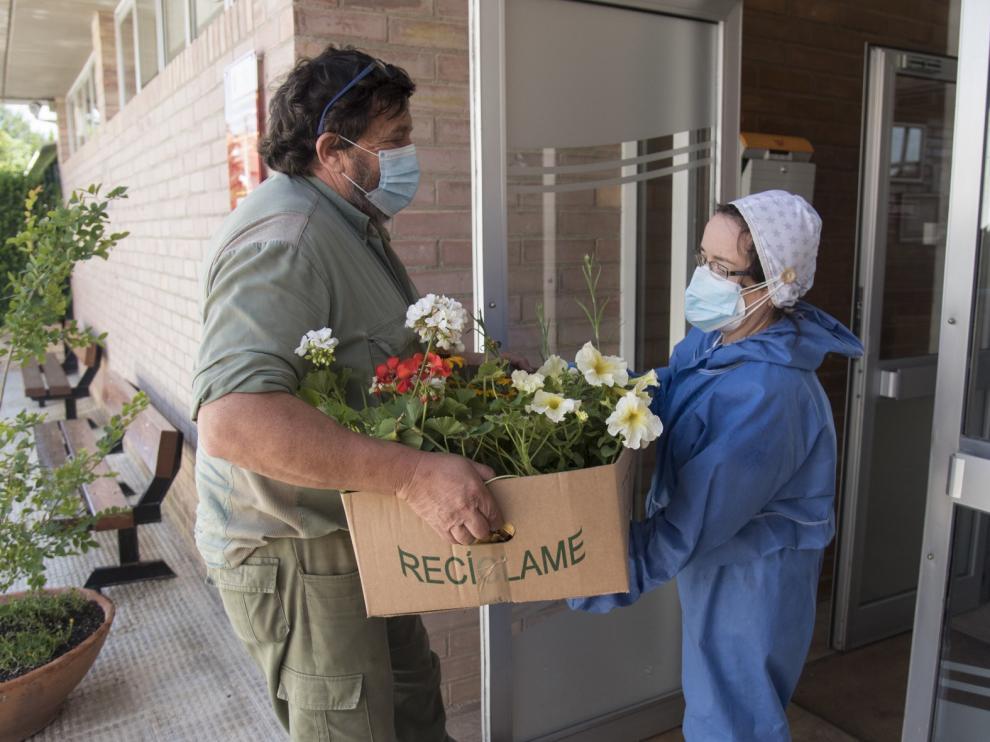 La Diputación Provincial de Huesca distribuye 1.500 flores a las 58 residencias de la provincia