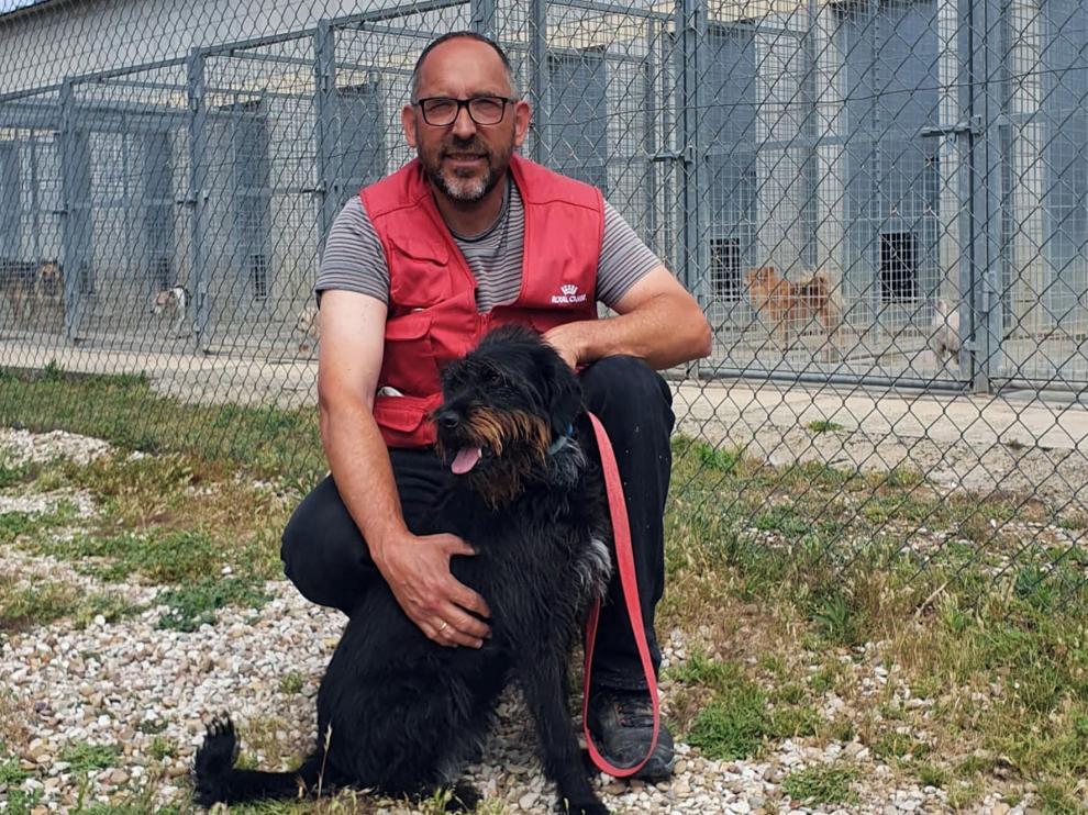 """Miguel Yzuel: """"España es el primer país de Europa en abandono de perros"""""""