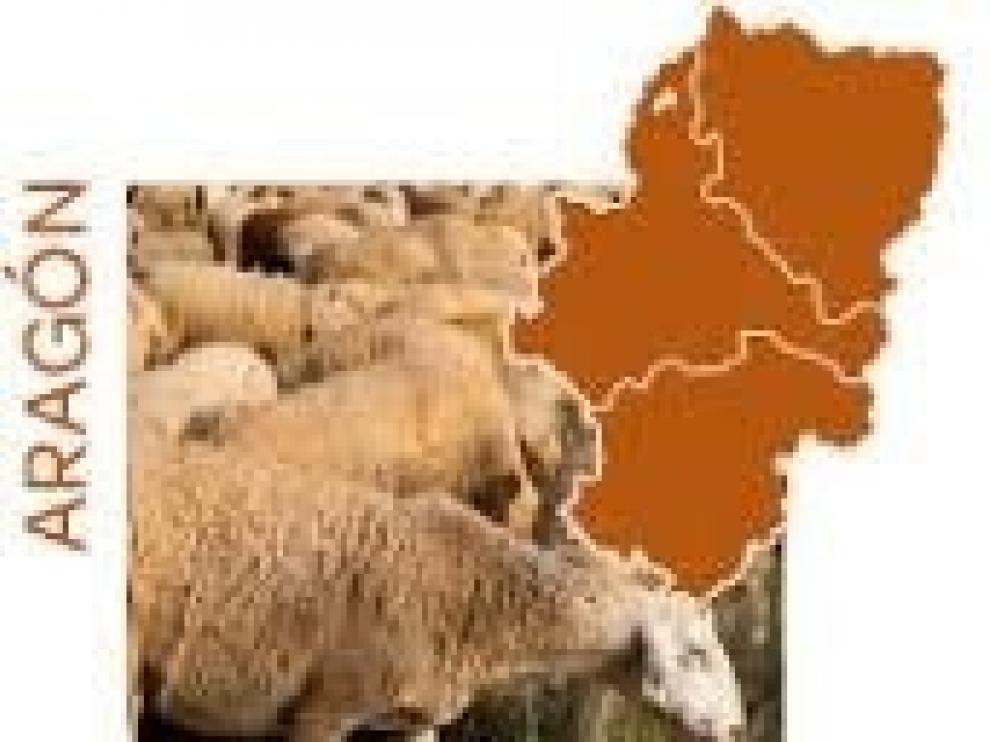 Carrefour ha comprado en el último año 50.000 kilos de Ternasco de Aragón