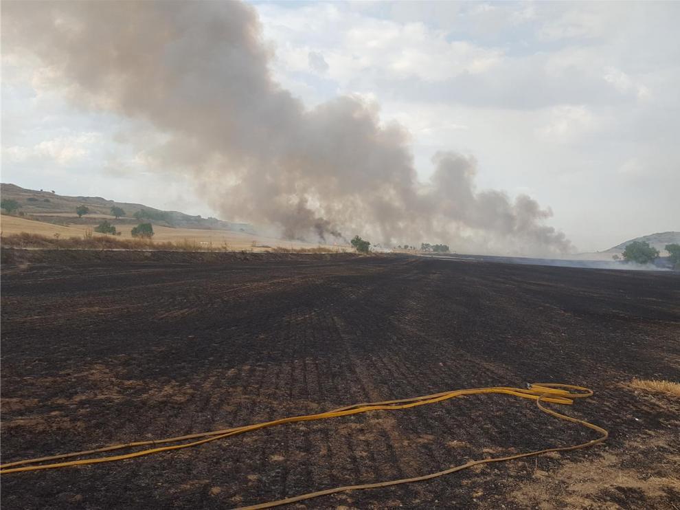 Un incendio arrasa unas 35 hectáreas de campo en Almudévar