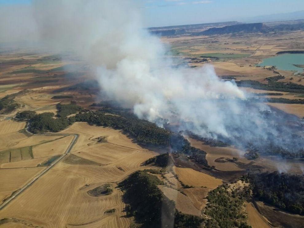 Zaragoza registra tres incendios forestales