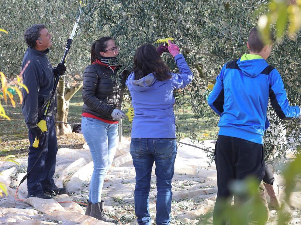 Los estudios agrarios de Huesca siguen entre los mejores