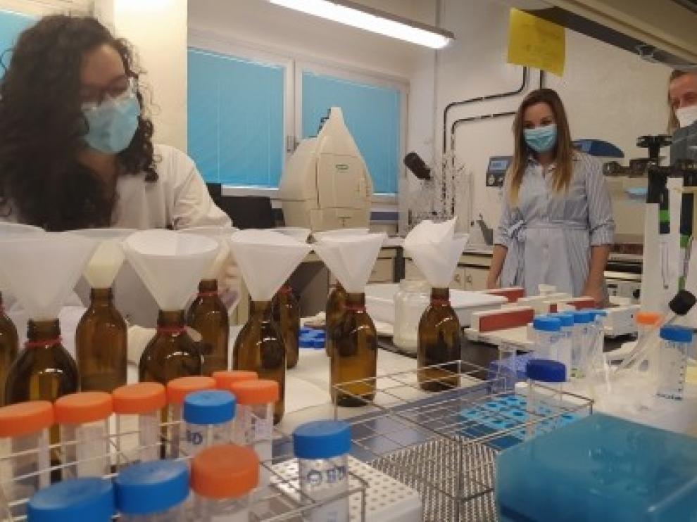 El Cita apuesta por el enfoque One Health para preservar la salud global y anticiparse a futuras pandemias