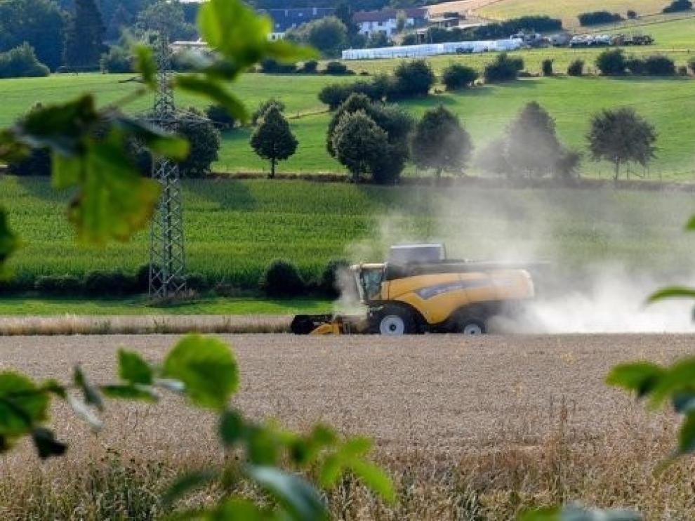 La ley de Dinamización del Medio Rural recibe 50 aportaciones