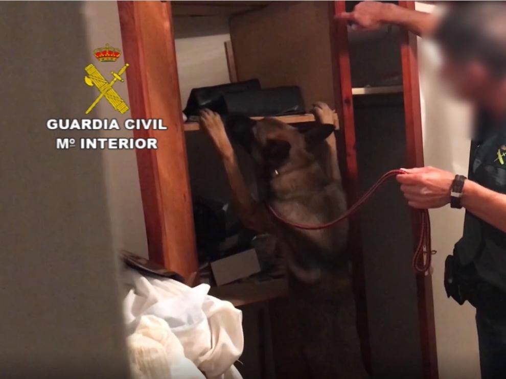 Desarticulada una organización criminal que traficaba con droga en Huesca, Tarragona y Gerona