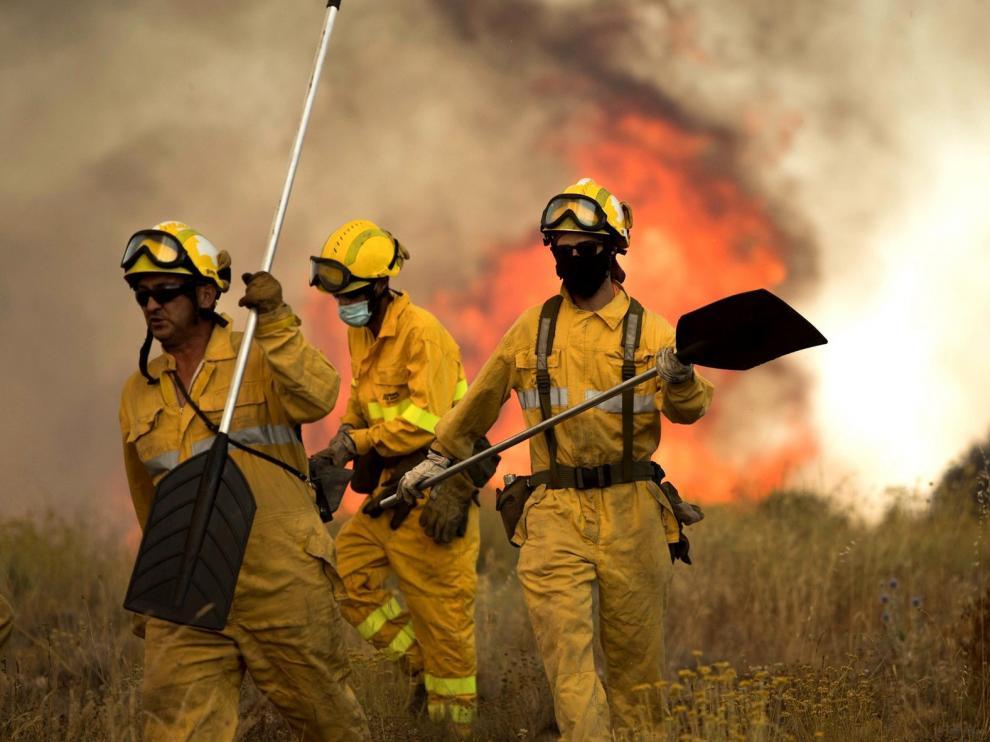 Un incendio arrasa 19 hectáreas de monte bajo en Fuendetodos