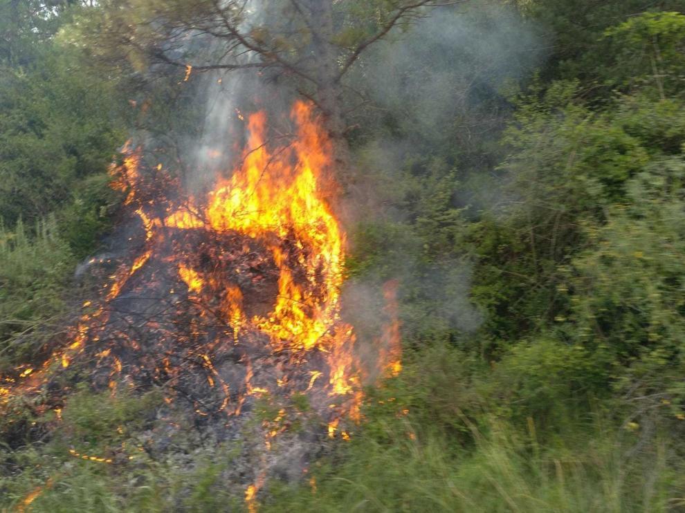 Controlan incendios en Escalona y Olvena