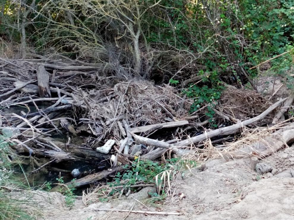 Tapón de ramas y troncos en el Flumen