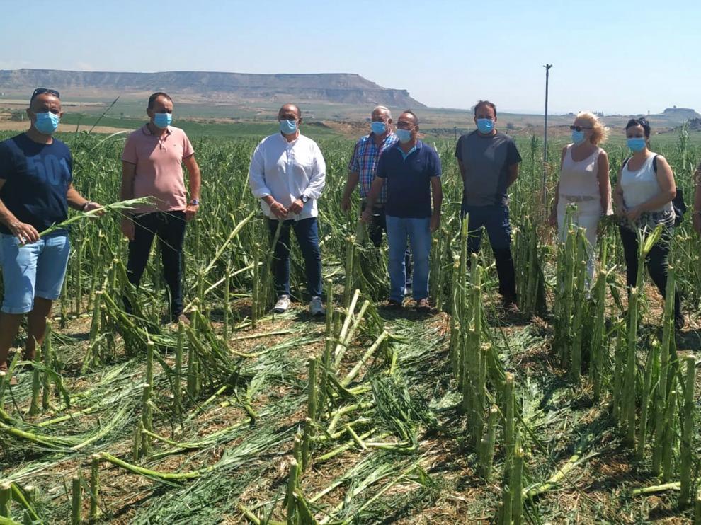 Los Monegros, la comarca aragonesa más afectada por el granizo en agosto