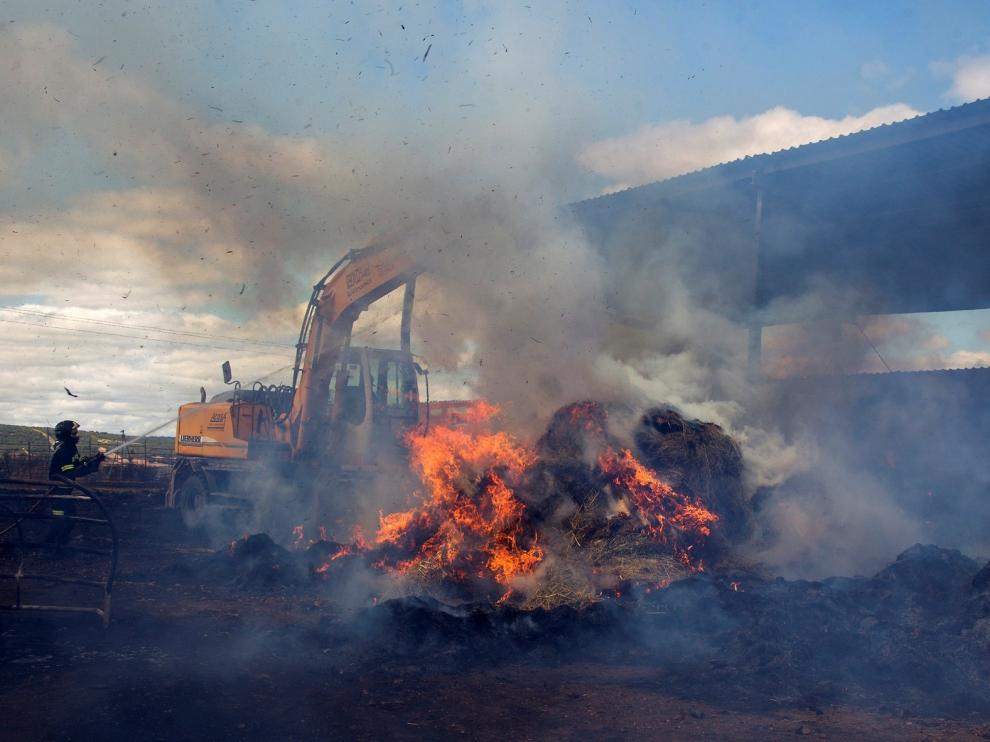 En lo que va de año se han quemado menos de la mitad de hectáreas que en 2019