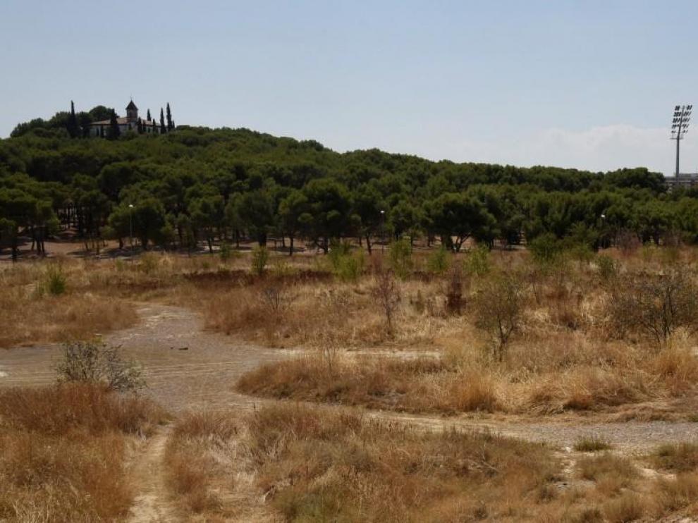 El Huesca da los primeros pasos para la repoblación en la zona San Jorge-El Alcoraz
