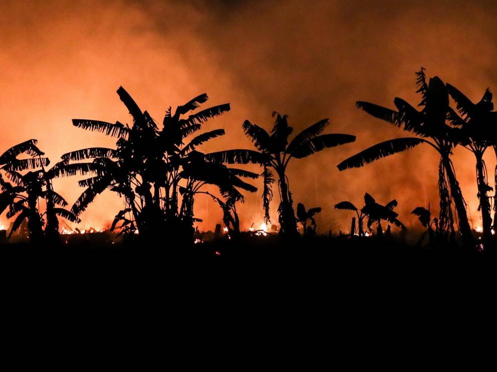 Los incendios agravan la pandemia en Brasil