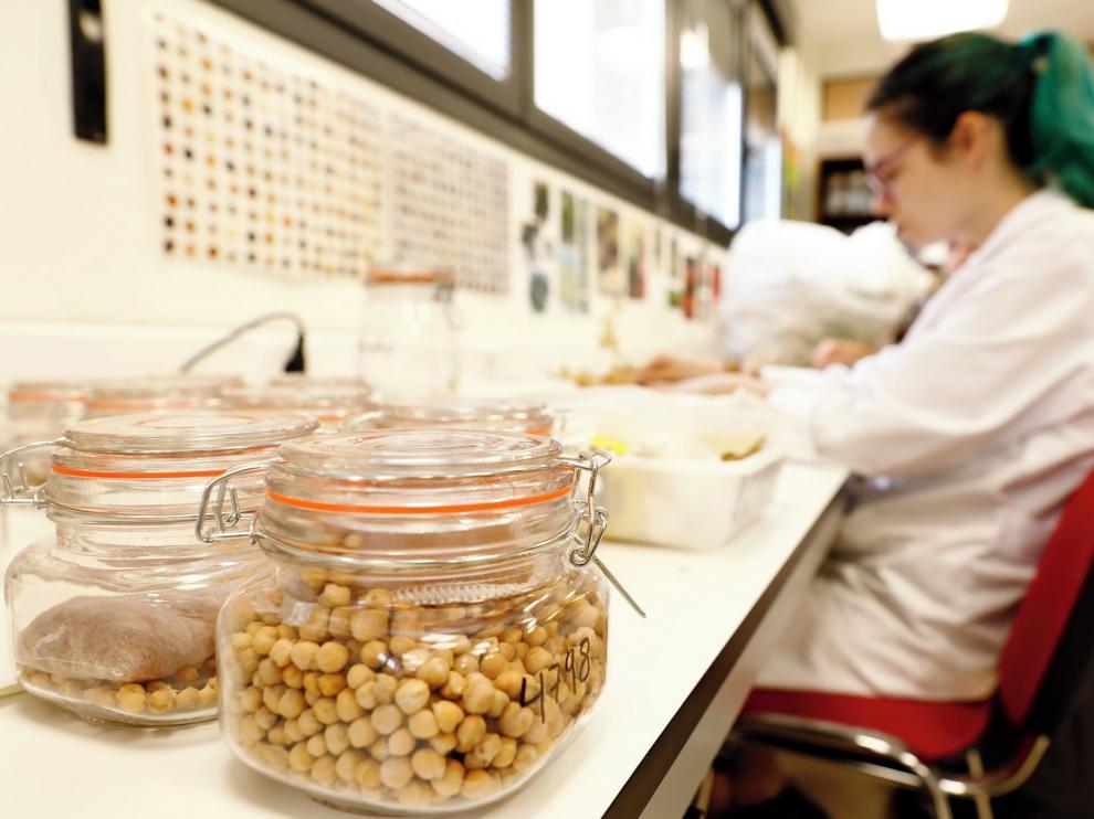 El Cita inicia la investigación de cinco proyectos en agricultura y ganadería