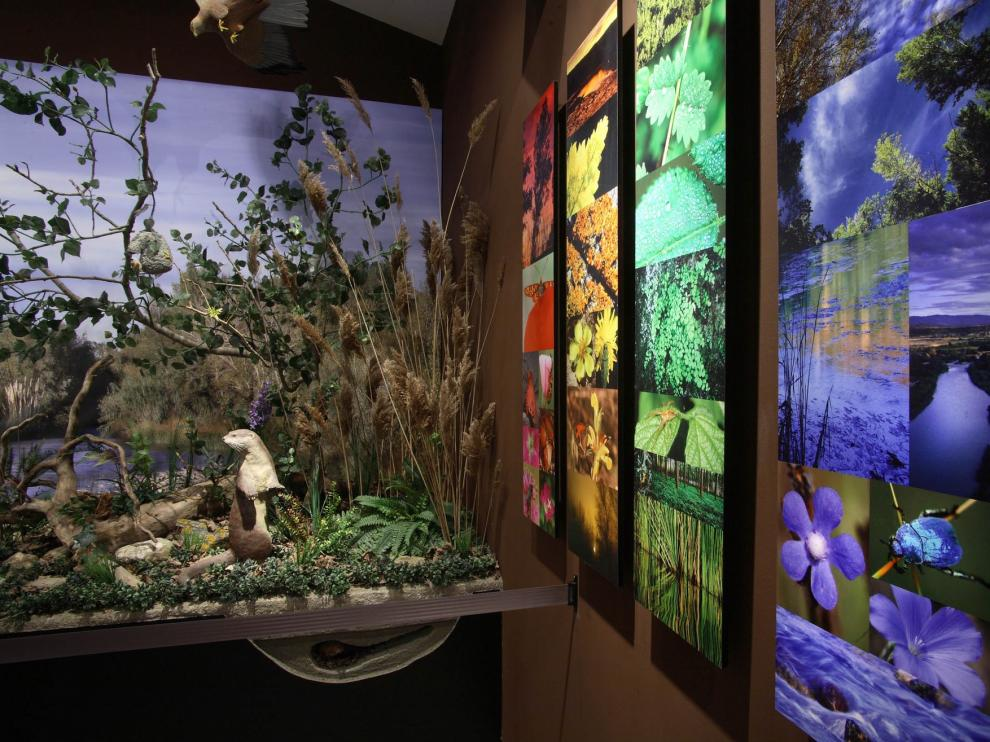La Pinzana de Monzón propone nuevas actividades en el centro de interpretación