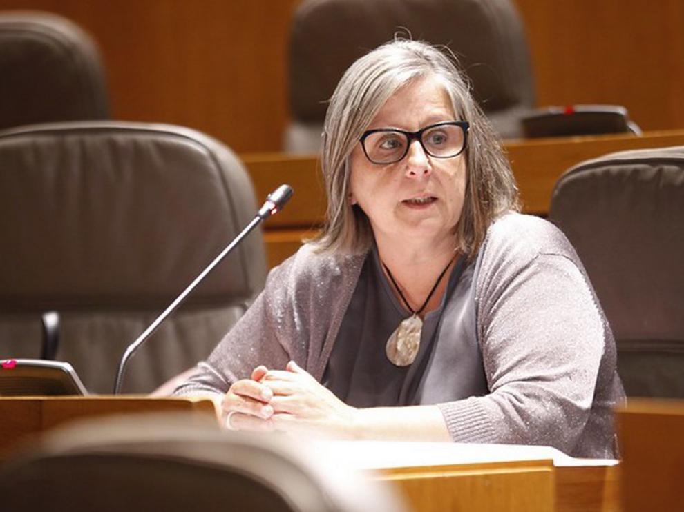 Ciudadanos pide dotar a Aragón de instrumentos legales para controlar los rebrotes de la pandemia