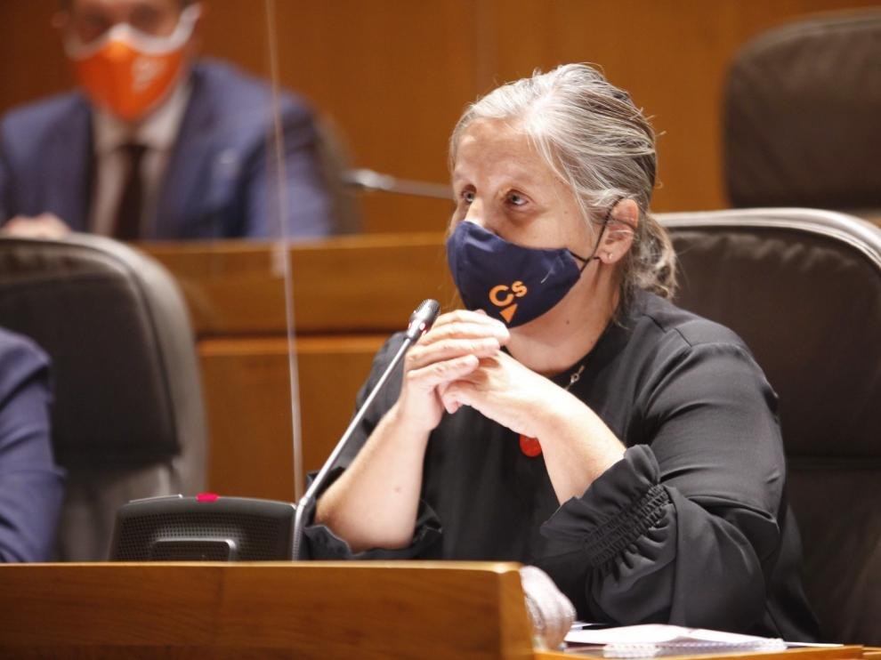 Unanimidad para pedir instrumentos legales para Aragón para controlar rebrotes