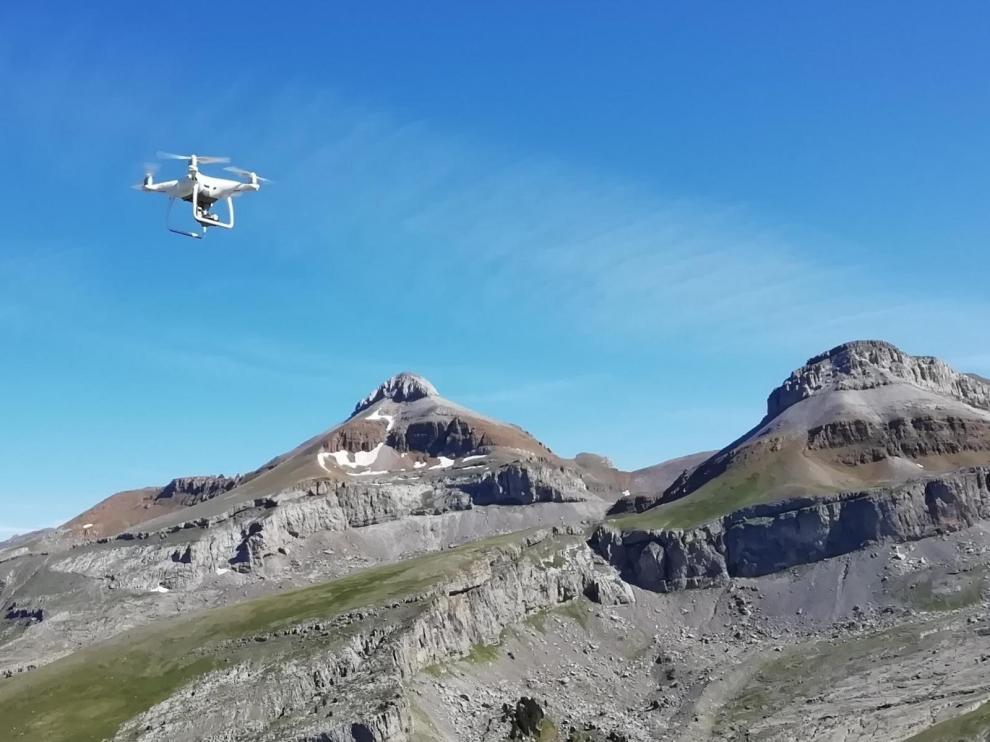 Utilizan drones en la Garcipollera para seguir al ganado extensivo