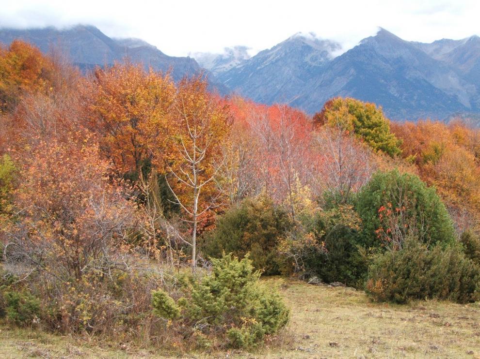 La Aemet prevé un otoño cálido y seco en Aragón que siga la tónica del verano