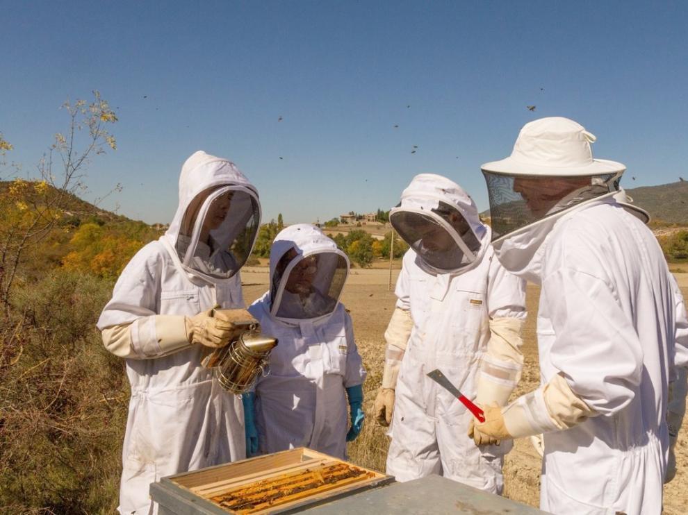 Cielos de Ascara pone la agricultura y la apicultura al servicio de la repoblación y la inserción social