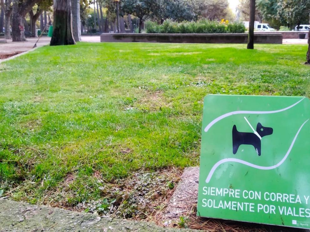Huesca obliga a los propietarios a limpiar los orines de sus mascotas