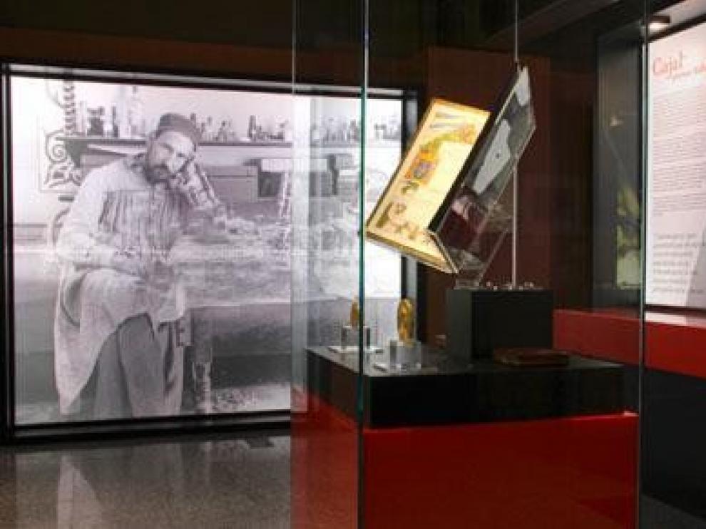 El CSIC exhibe parte del legado del Premio Nobel Ramón y Cajal