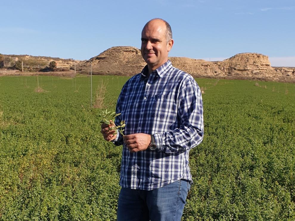 Robert Jaimejuan, responsable del sector en COAG, defenderá los intereses de los 120.000 productores europeos de forraje