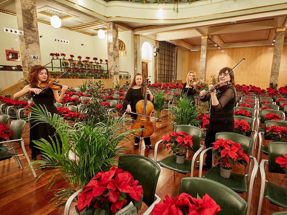 Un concierto para plantas bendice con su música a centros sanitarios y asistenciales