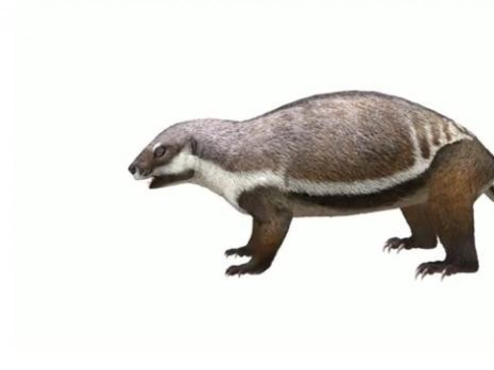 Describen un mamífero de 66 millones de años que vivió entre dinosaurios