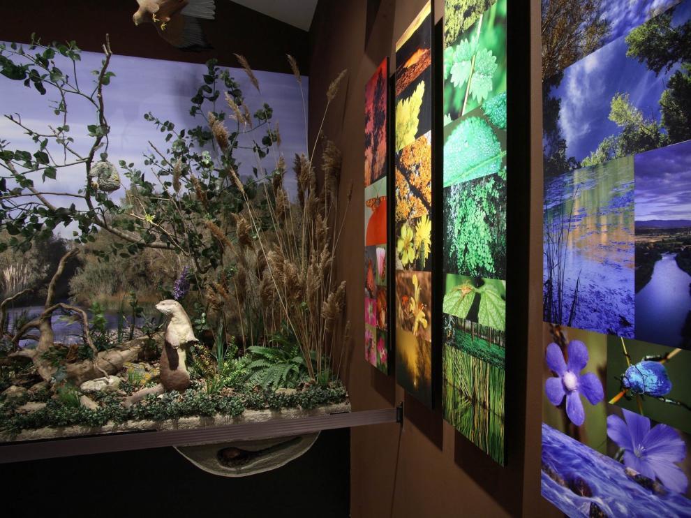 Un total de 1.390 visitantes pasaron por el centro de interpretación medioambiental del río Cinca