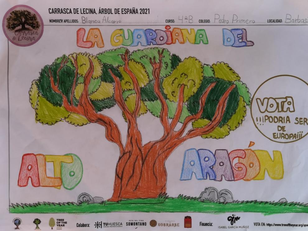 Más de 20.000 niños de toda la provincia apoyan a la Carrasca de Lecina como Árbol Europeo del Año 2021