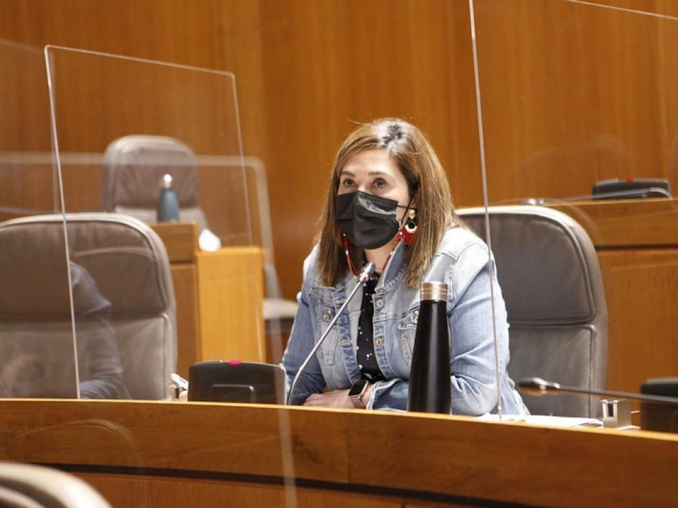 Ciudadanos pide desarrollar un Plan de Cuidados Paliativos de Aragón en un plazo de 6 meses