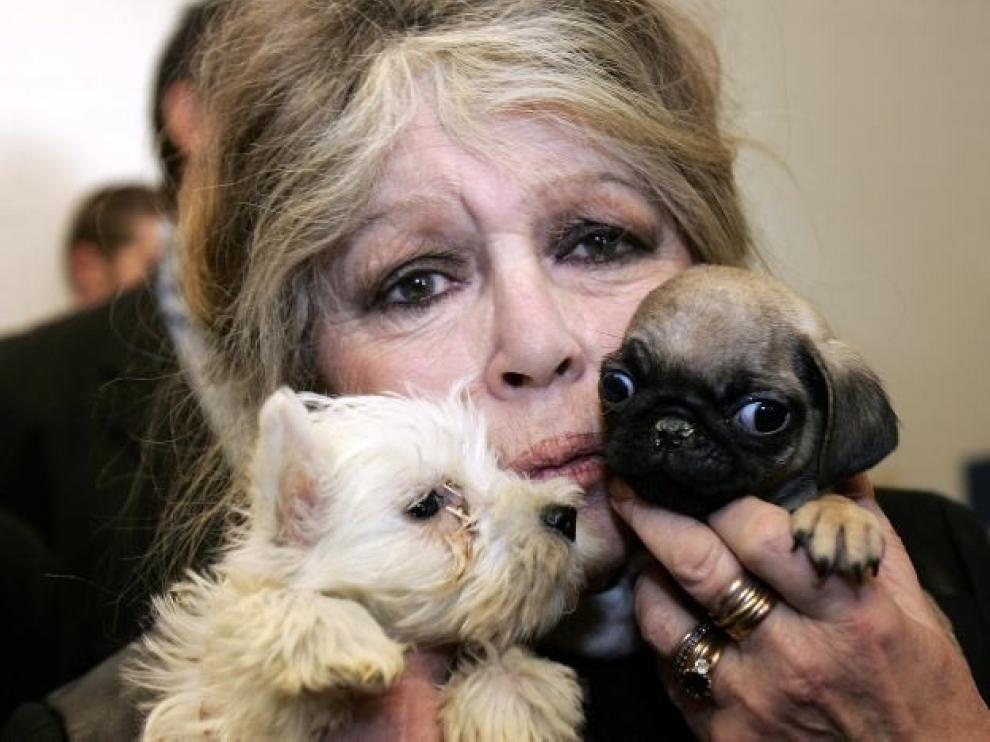 Brigitte Bardot pide apoyo al estado francés para ayudar a más animales
