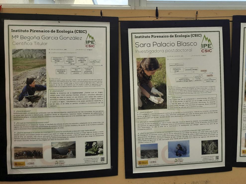 Dos de los paneles de la exposición que muestran los hitos profesionales de las científicas del IPE-CSIC.