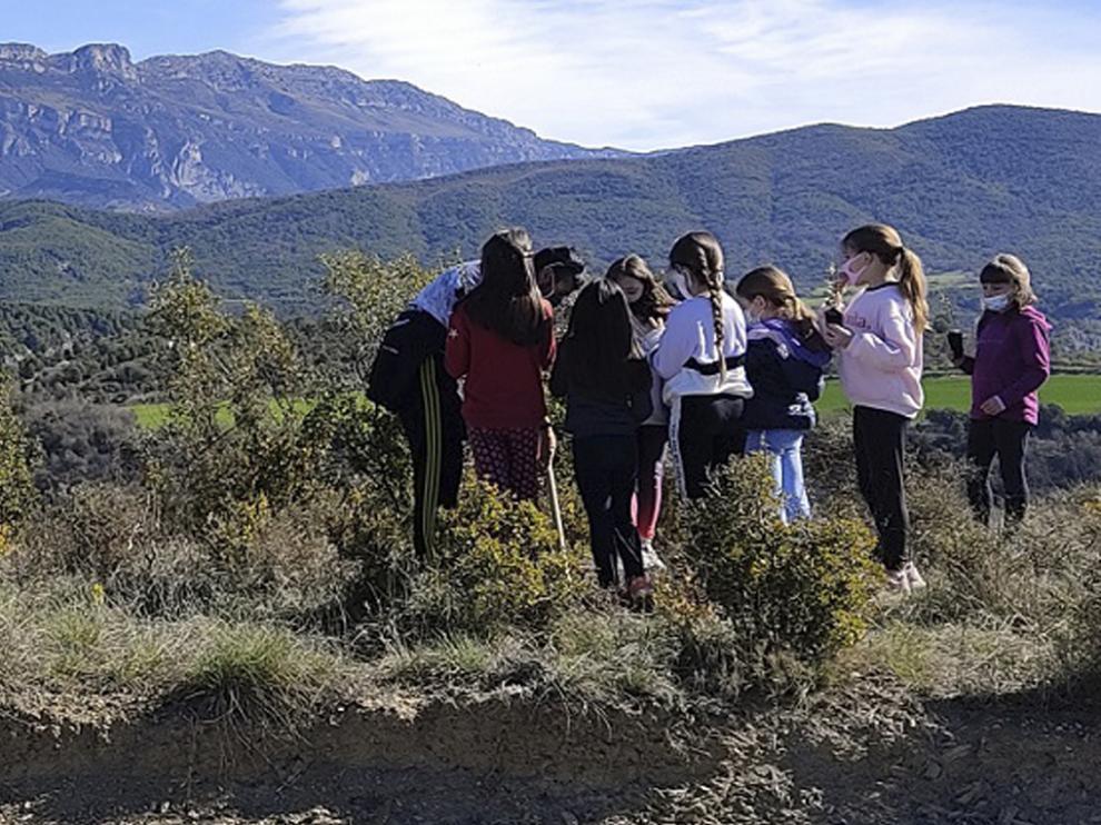 Los escolares reciben explicaciones en La Serreta, con la Peña Montañesa al fondo.