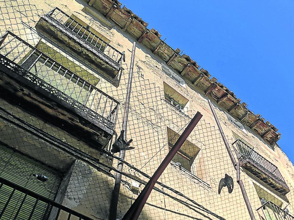 Palomas fallecidas sobre la red de uno de los edificios de la plaza de San Pedro.