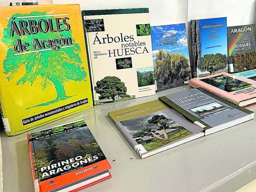 Algunos de los libros sobre árboles que se pueden consultar o pedir en préstamo en el IEA.