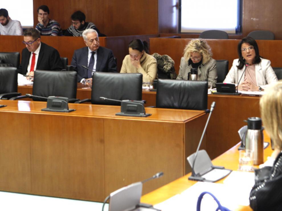 Comisión de Sanidad del Parlamento aragonés