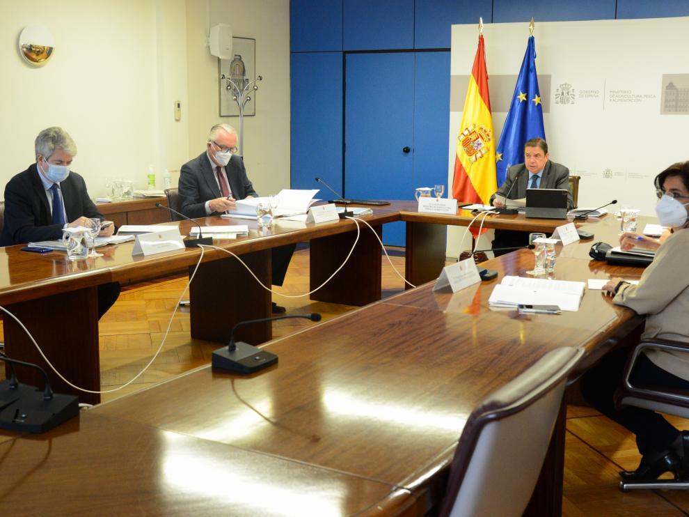 El ministro Planas se reunió de forma virtual con los consejeros de las CCAA