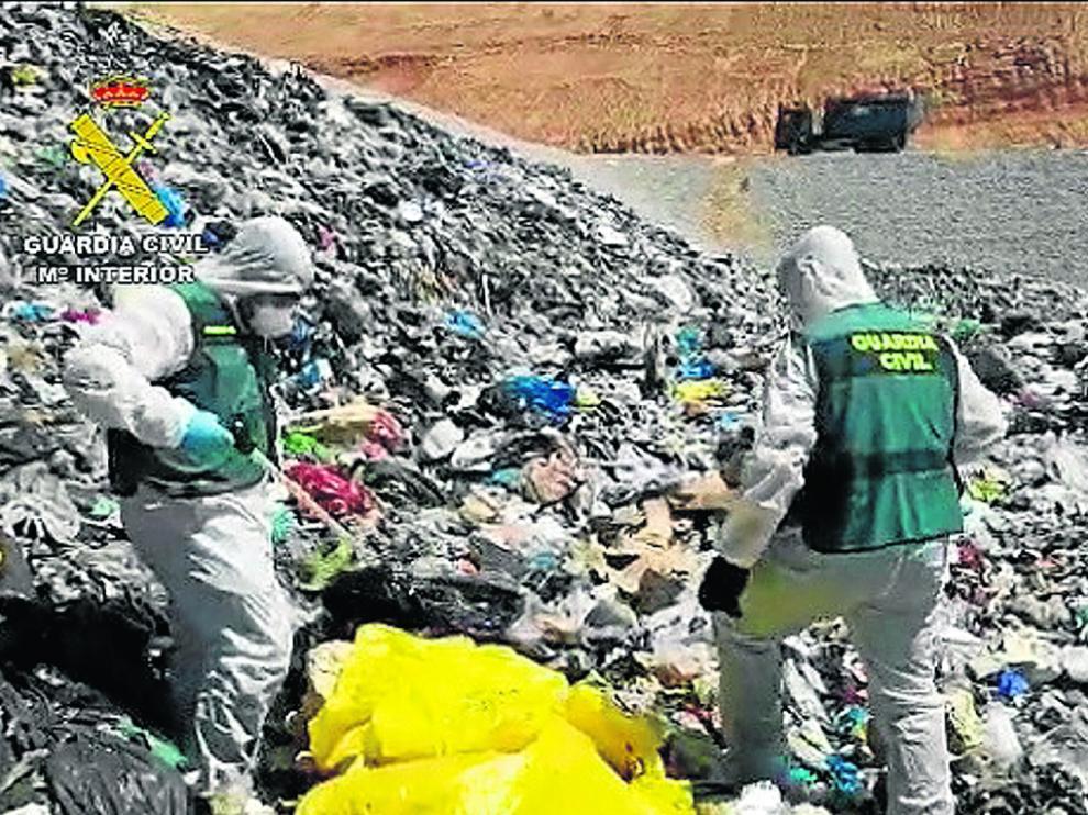 El Seprona investigó en 2020 más de 130.000 infracciones higiénico-sanitarias.