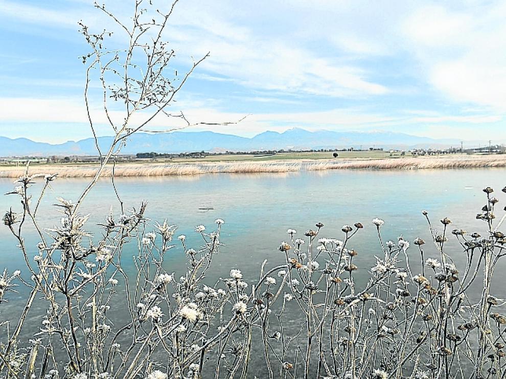 La Alberca de Loreto, helada, durante el pasado invierno
