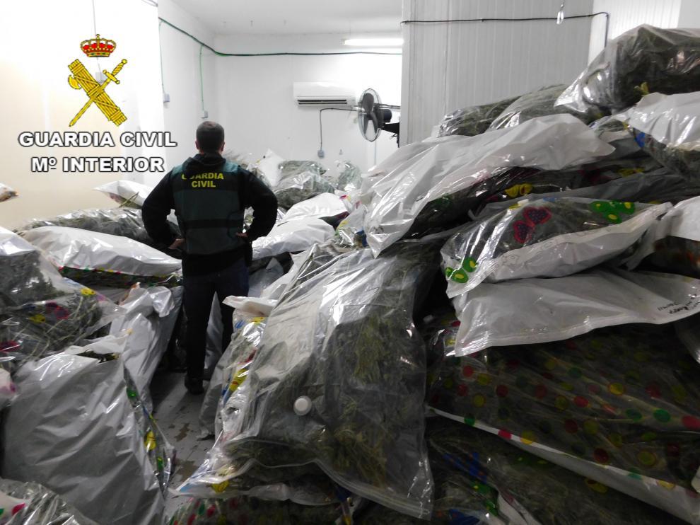 Intervienen más de 700 kilos de marihuana en la segunda fase de la Operación KENEVIR.