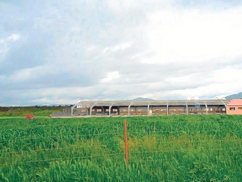 Explotación porcina en Arrés, en cuyo proyecto participó Inagro.