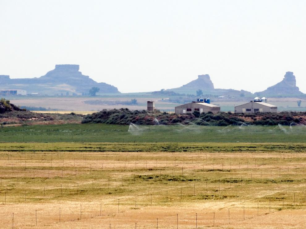 La comarca cuenta con una gran riqueza de espacios agrícolas y naturales.