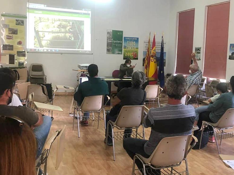 Las subastas de ganado de Expoforga se han celebrado por primera vez en la finca La Garcipollera, del Cita