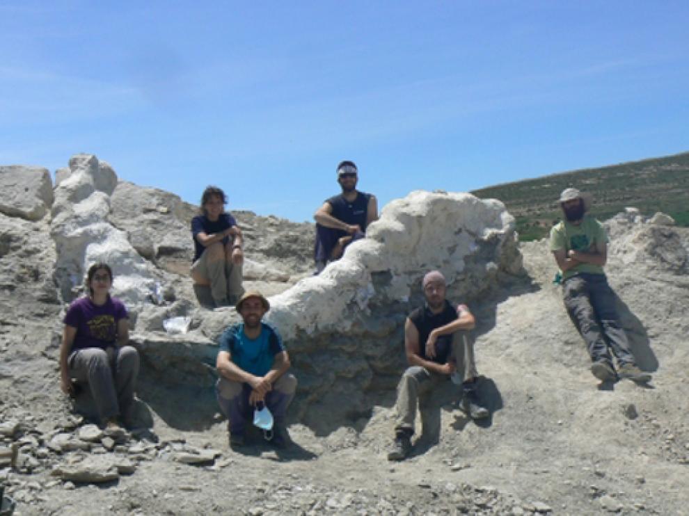 Los paleontólogos posan junto a los fósiles de columna del dinosaurio.