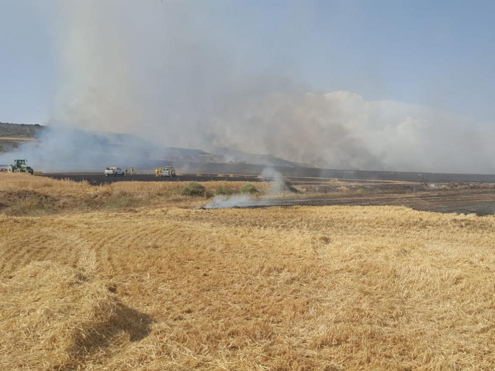 Superficie calcinada esta tarde por el incendio en Almudévar.