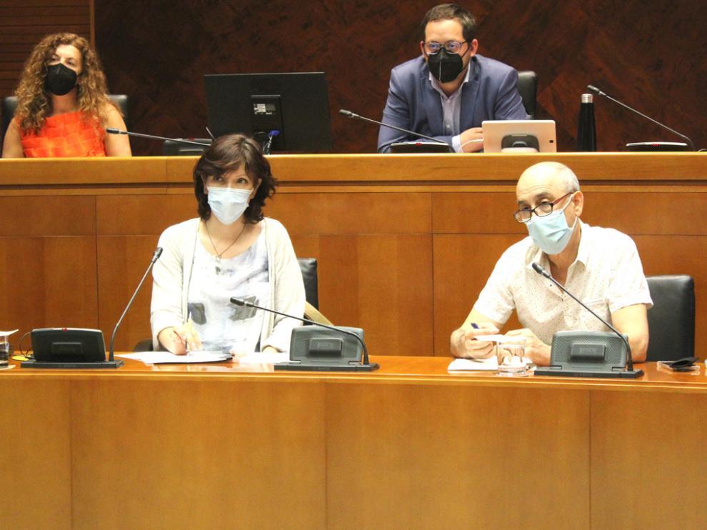 Mara Charro y José Carlos Torralba durante la comparecencia ante la Comisión de las Cortes