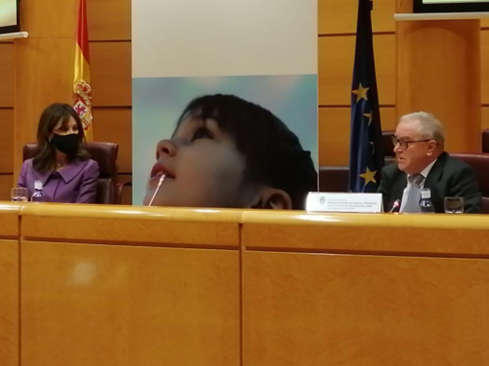 Miguel Gracia, en la mesa redonda en la que participó este miércoles en el Senado.